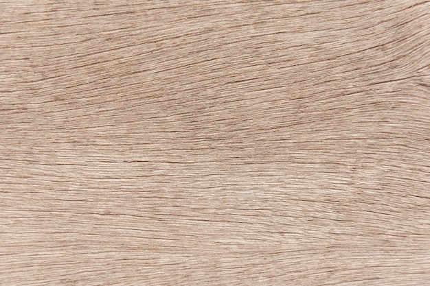 Old wood texture background. wood surface eroded.