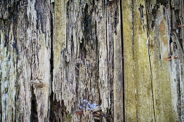 Webの背景、腐った、老朽化した、腐った木製の背景の古いウッドテクスチャ
