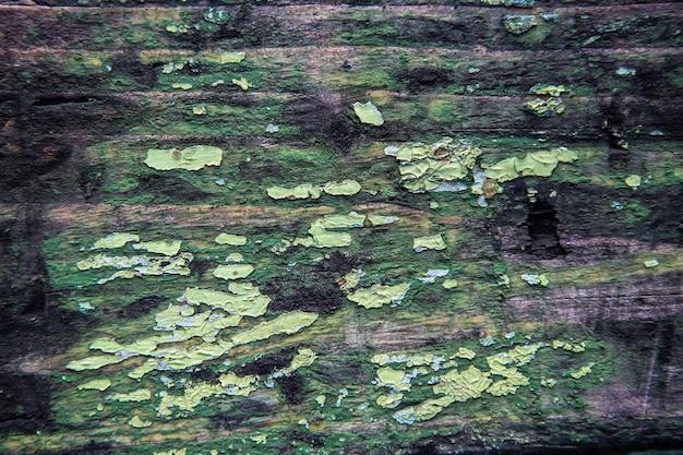 古い木の質感、さまざまな色の緑色のペンキをはがします。スペースとレタリングのためのスペース。