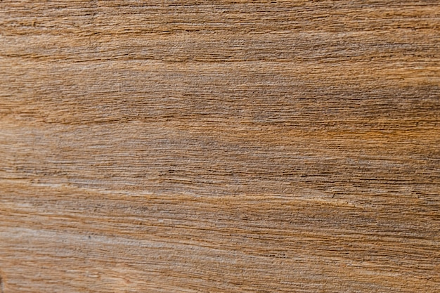 Old wood texture, rough surface, natural pattern