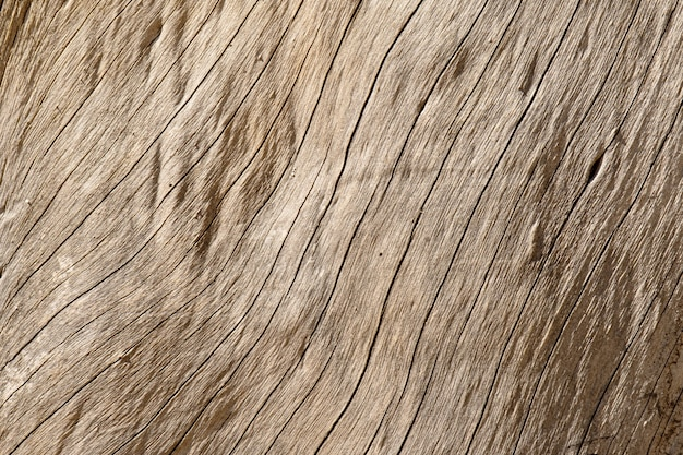 Old wood texture with natural pattern background
