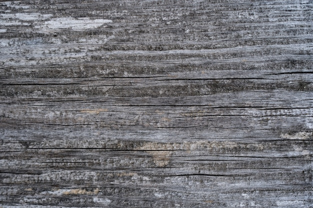 Old wood texture of wood wall for background and texture.