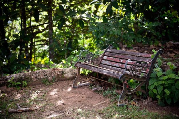 녹색 숲에서 오래 된 나무 벤치