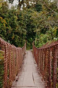 自然の中で古い木製の橋
