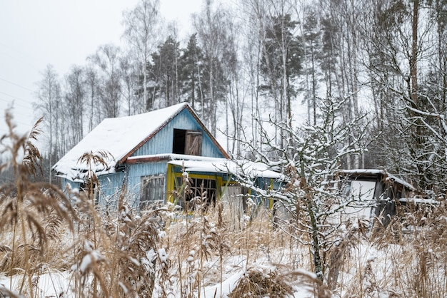 Старый деревянный загородный дом в зарослях сухого тростника в зимний сезон