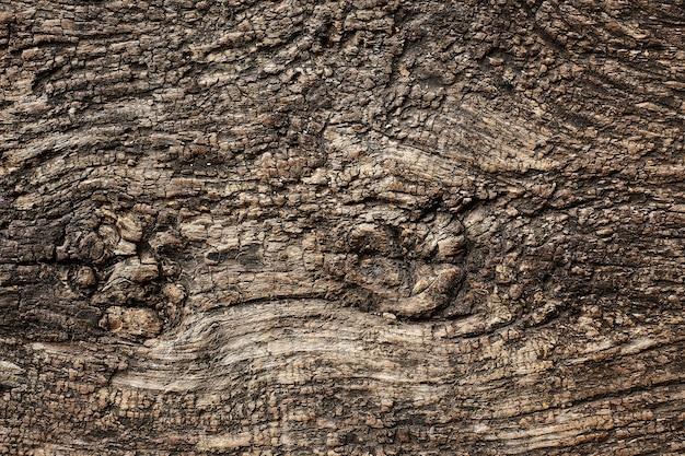 古い木製の暗いグランジbackround。