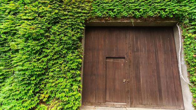 일본 구라시키에 있는 담쟁이덩굴 잎이 있는 오래된 나무 문