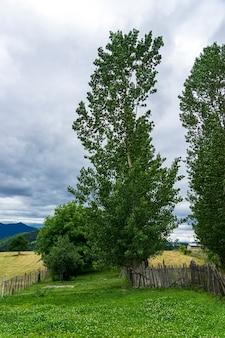 Старый деревянный забор в деревне, провинция артвин - турция