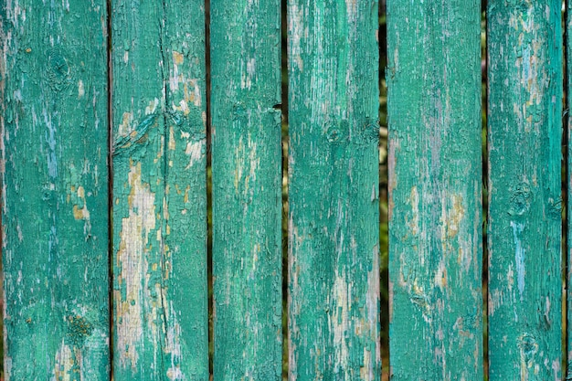 Old wooden fence light green paint peeling board texture. background