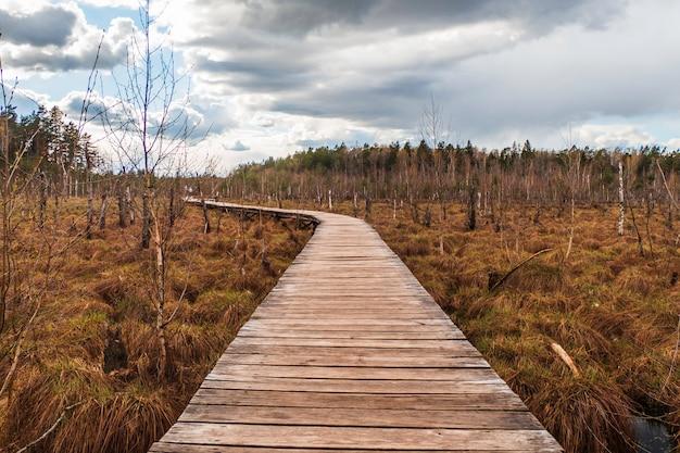 Старый деревянный пешеходный мост посреди болотистой местности.