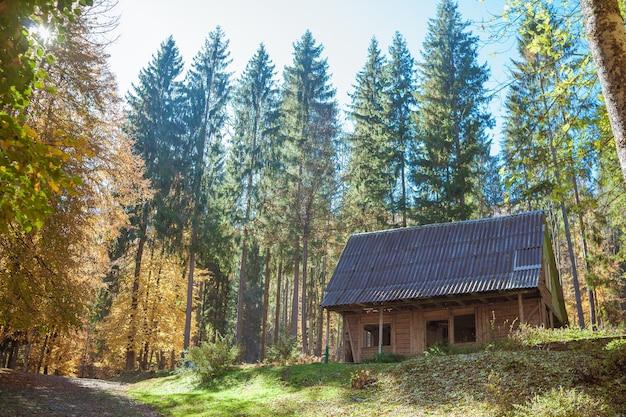 Старый деревянный дом в красивом лесу осенью. удивительный пейзаж с домиком на лесной поляне, разноцветными деревьями. солнечная теплая осень в украине.