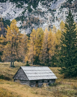 Old wooden house in slovenian alps surrounded by rocky mountains and colorful trees in autumn season