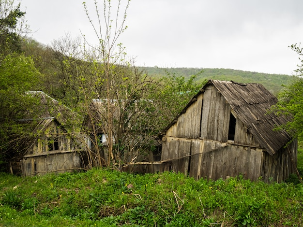 Old wooden huts in the woods. destroyed wooden houses. plight
