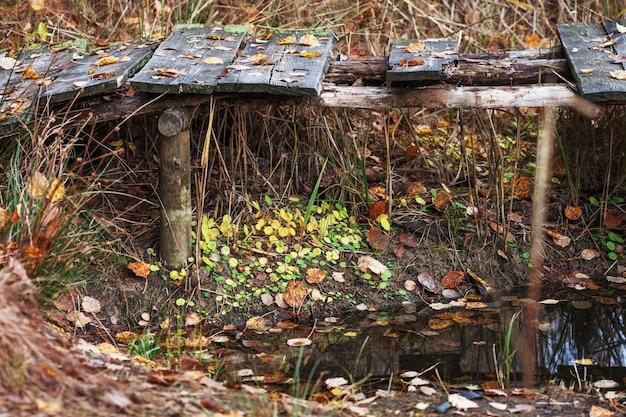 Старый деревянный пирс на лесном озере. осенняя пора.