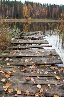 Старый деревянный пирс с желтыми листьями падения на лесном озере. тихо и спокойно. место для отдыха и медитации. осенняя пора.