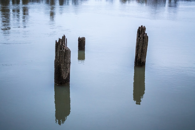 Old wooden piles of old ruined pier out of the water