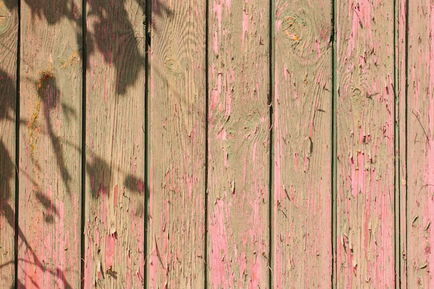 Old wooden plank background. peeling, faded pink paint on old boards with the shadow of tree branches