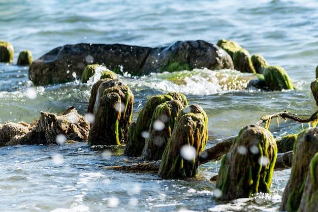 Старые деревянные столбы заросли водорослями. сломанный деревянный пирс остается в море. красивый цвет воды под солнечным светом. прилив и морской спрей.