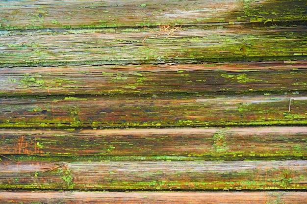 오래 된 나무 방패는 녹색 페인트.