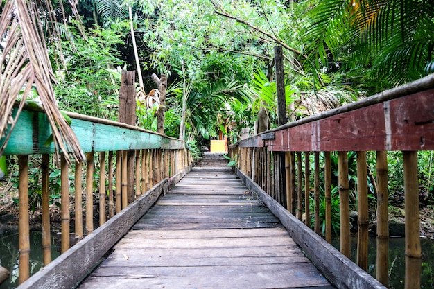 Old wooden suspension bridge used to cross the stream. the trees plants are full