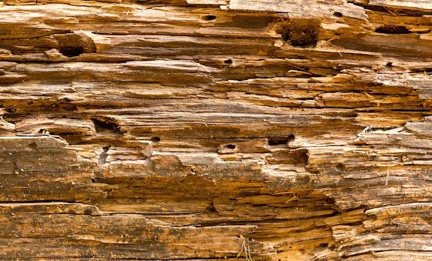古い木の質感、茶色