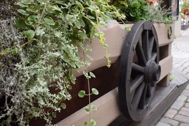The old wooden wheel on a hay, retro