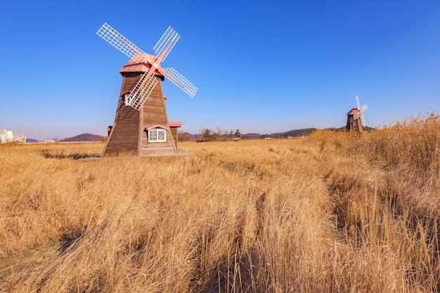 Старые деревянные ветряные мельницы в парке в южной части кореи.