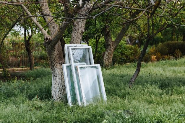 緑の芝生の上の木の周りに固まったガラスの古い木製の窓