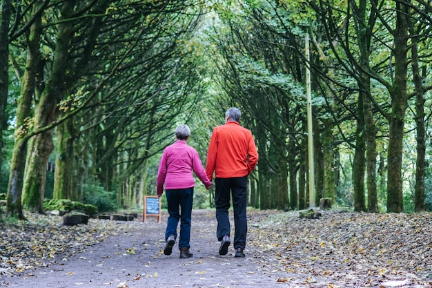 A older couple hold hand each other and walking in the forest.