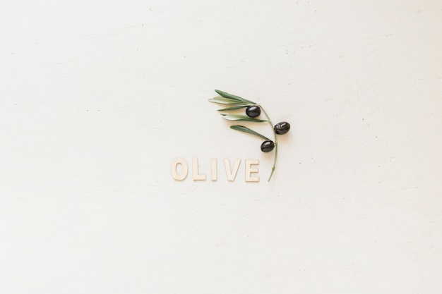 Olive word with branch