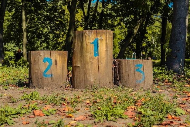 Олимпийский подиум из пней на поляне осенью.