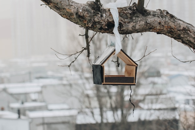 На кривом стволе дерева вешается кормушка с семенами зимой в ясную погоду.