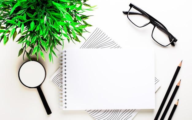 На светлом фоне зеленое растение, очки, увеличительное стекло, карандаши и чистый блокнот для вставки текста или иллюстрации.