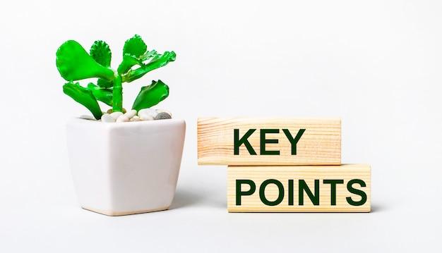 На светлом фоне растение в горшке и два деревянных блока с текстом ключевые моменты.