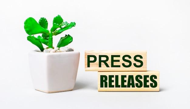 明るい背景に、鉢植えの植物と2つの木製ブロックに「プレスリリース」というテキストが表示されます。