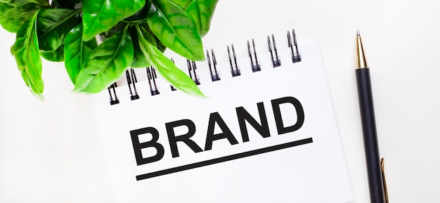 На белом фоне зеленое растение, белый блокнот с надписью бренд и ручка.