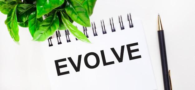 На белом фоне зеленое растение, белый блокнот с надписью evolve и ручка.