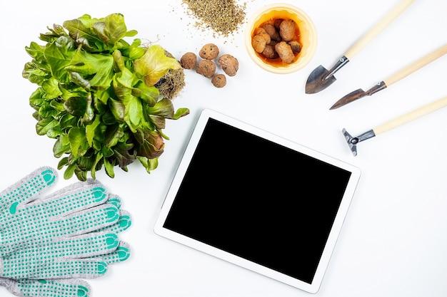 На белом столе небольшие инструменты для домашнего садоводства лопаты и грабли садовые перчатки керамзит растение