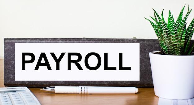 На деревянном столе папка для документов с тестом payroll, зеленым растением в горшочке, ручкой и калькулятором. бизнес-концепция.
