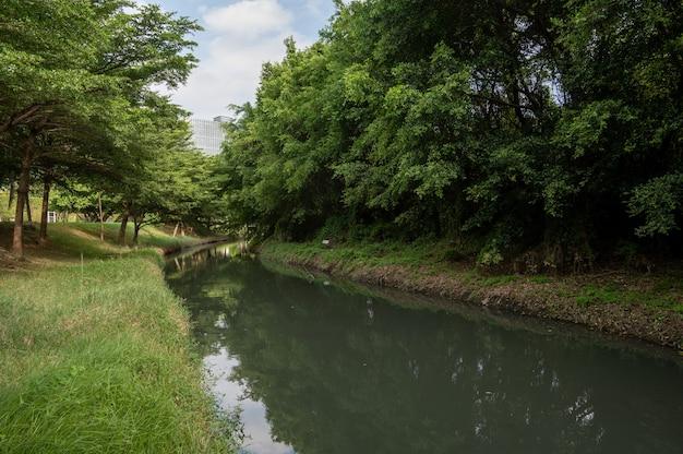 강의 양쪽에는 숲과 초원이 펼쳐져 있습니다.