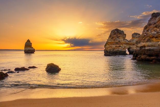 На пляже камило на рассвете