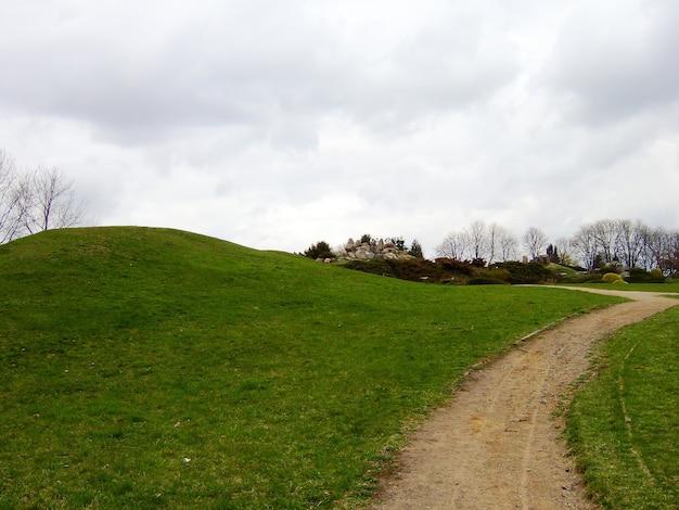 왼쪽에는 푸른 풀이 무성한 언덕이 있고 그 근처에는 구름이 가득한 회색 하늘을 배경으로 더러운 길이 있습니다. 백그라운드에서 나무