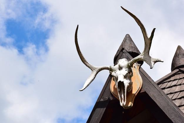 오른쪽에는 큰 뿔이 달린 장식용 사슴 두개골이 집의 나무 지붕에 매달려 있습니다. 왼쪽에는 푸른 하늘을 배경으로 비문을 넣을 빈 공간이 있습니다