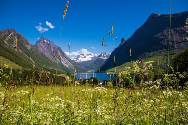На вершине горы с невероятным видом на альпы саннмор в норвегии.