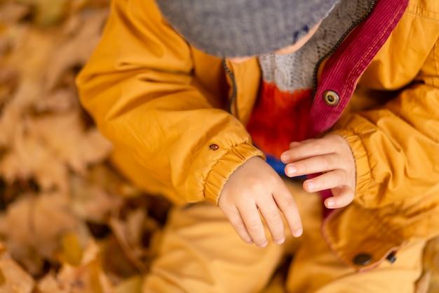 秋の公園で小さな男の子が黄色いジャケットの黄色い葉の上に座って、子供の手にてんとう虫を保持します。赤いカブトムシは子供の指をonい回る。