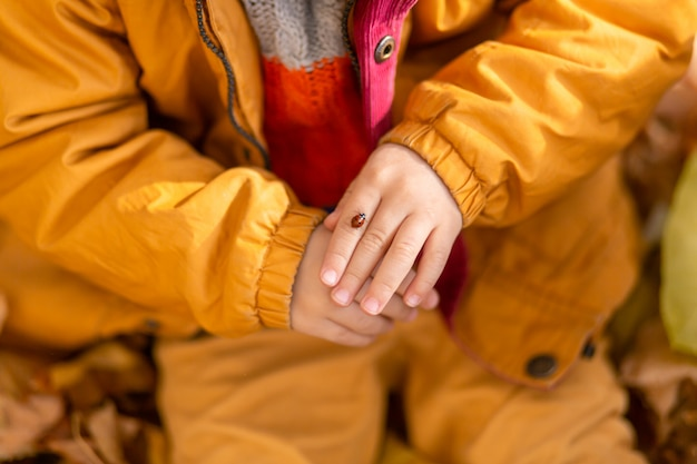 秋の公園で小さな男の子が黄色いジャケットの黄色い葉の上に座って、子供の手でてんとう虫を保持します。赤いカブトムシは子供の指をonい回る。