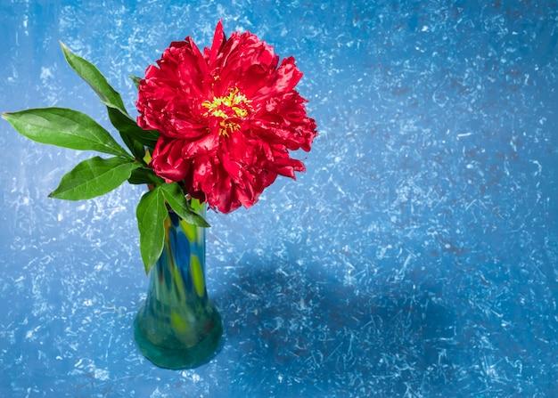 コピースペースのある青いテクスチャ背景にカラフルな緑の花瓶の1つの美しい真っ赤な牡丹。明るいお祭りのグリーティングカード。休日の母または女性へのフラワーギフト。水平方向。