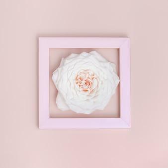 프레임에 하나의 아름다운 흰색 장미 꽃 최소 흑백 인사말 카드 색상 추세