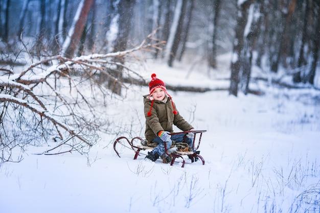 Один мальчик с санями катается на заснеженной лужайке на фоне высоких деревьев.