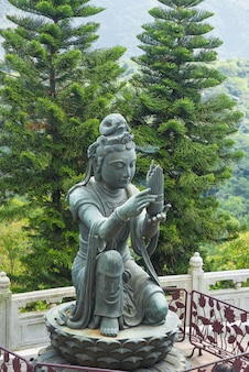 One of buddhist statue making offerings to the tian tan buddha